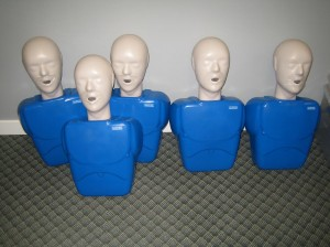 CPR training equipment used for first aid / CPR courses